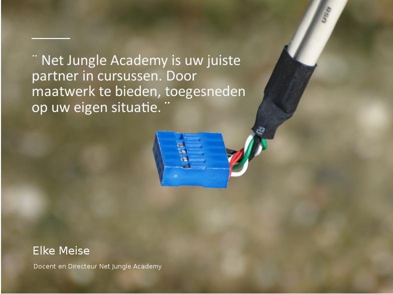 Maatwerkcursussen Net Jungle Academy